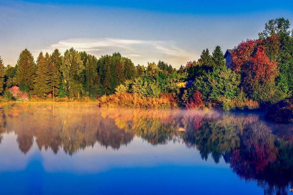 lake, trees, reflection